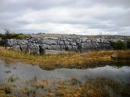 Burren epikarst - Photo by Colin O'Reilly